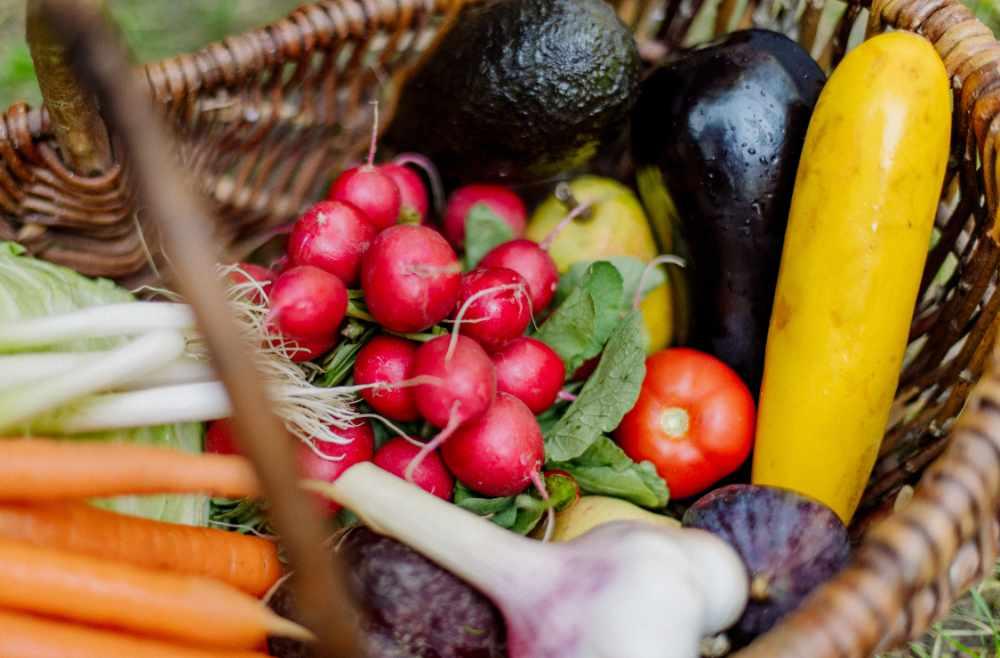 migräne Ernährung Gemüse Ernährungsberatung München avocadooo